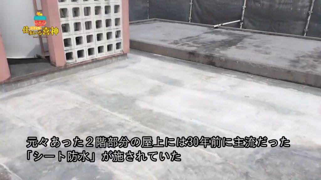 外壁のカビやコケ解消!改修塗装防水